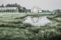 20050625-20050625-20050625-20050625-barn and pond-2